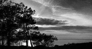 Des photos en Noir et Blanc